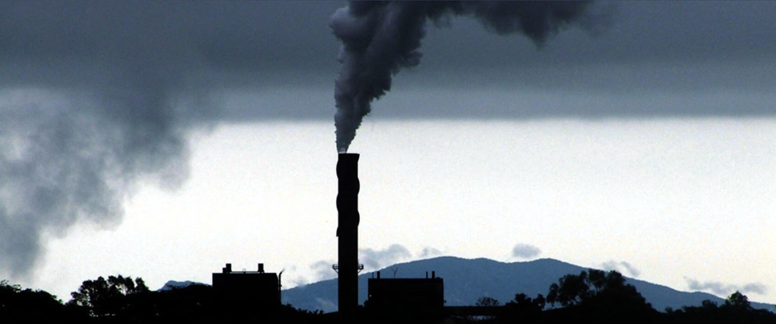 Blog Pollution