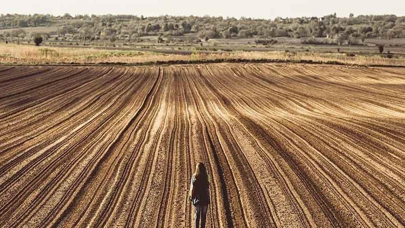 Farm Outback